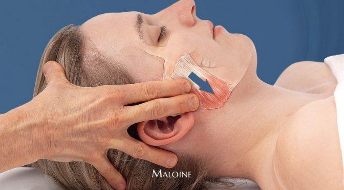 Massothérapie clinique