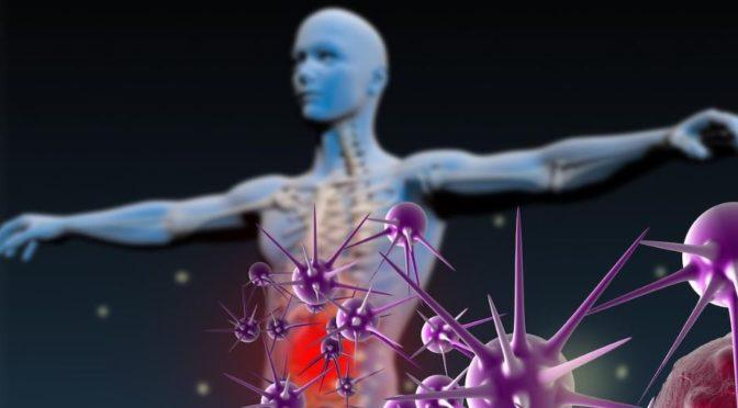 Et si vous cajoliez votre système immunitaire ?